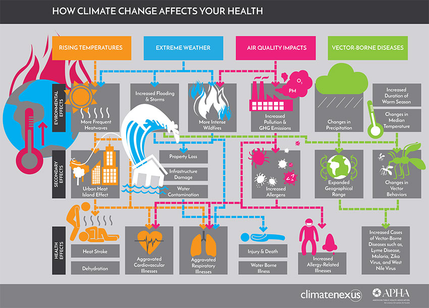 diagram of how climate change affects health