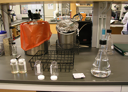 Bottles of water and flasks on lab bench ready for testing.