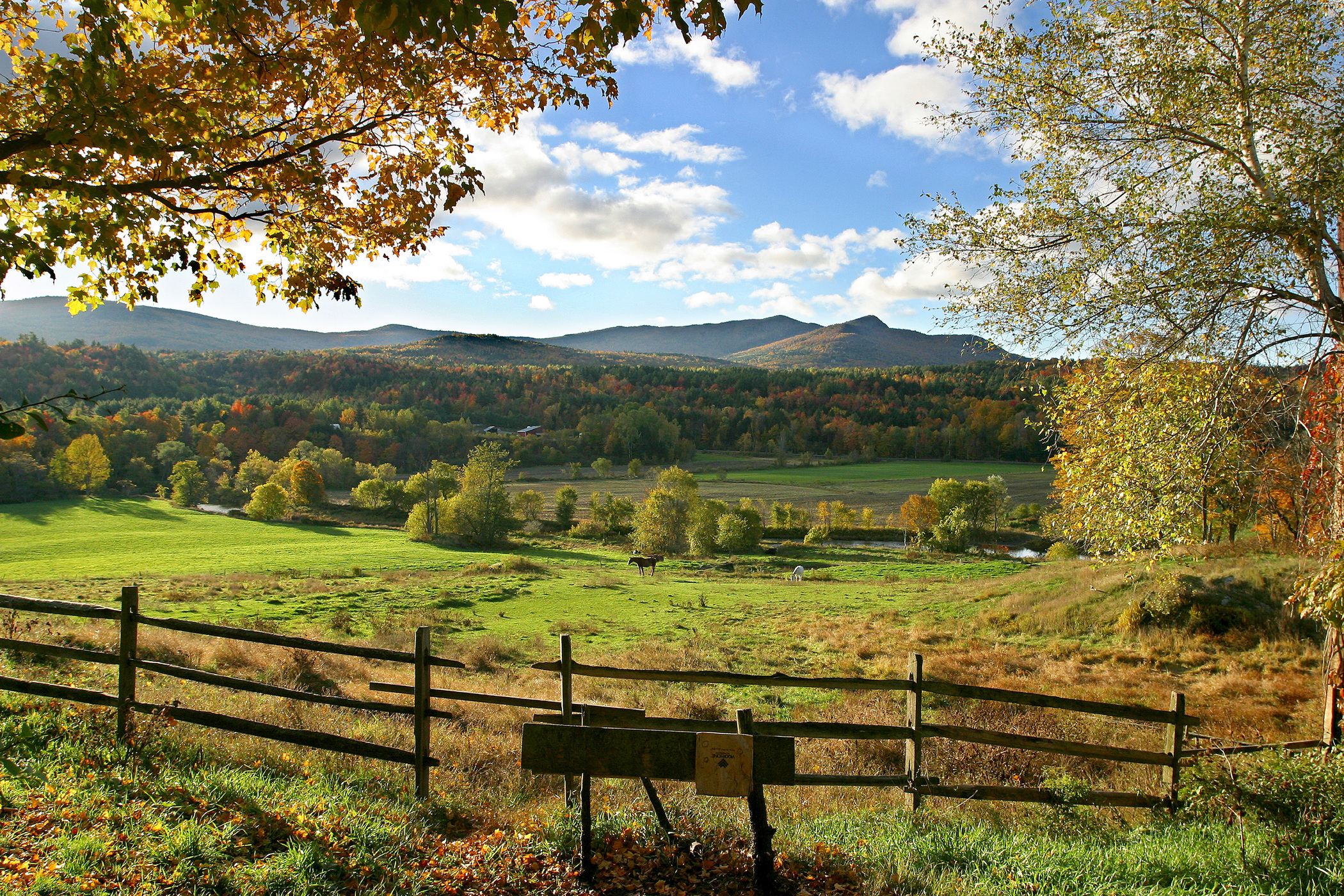 Vermont mountains and field in summer