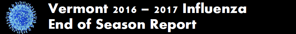 2016-2017 Influenza Report Button