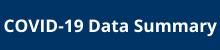 COVID-19 Data Summary