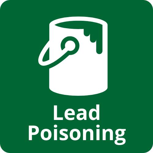 childhood lead poisoning