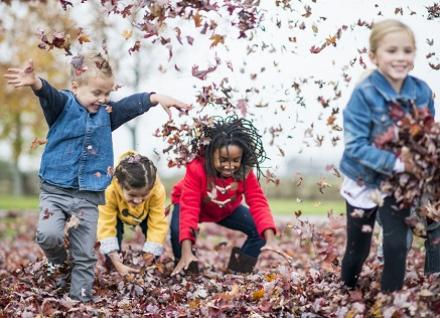children throwing leaves