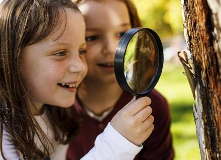 children looking at insect through magnifying glass