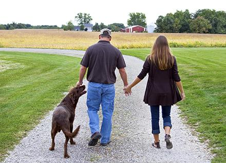 Couple holding hands and walking a dog.