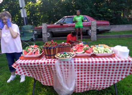 healthy food on picnic table