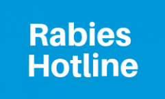Rabies Hotline